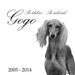 Gravsten bild hund Gogo