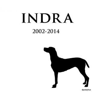 Gravsten hund silhuett Indra