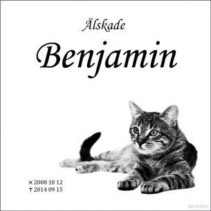 Gravsten katt Älskade Benjamin