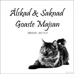 Gravsten katt Goaste Majsan