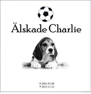 Gravsten hund Älskade Charlie
