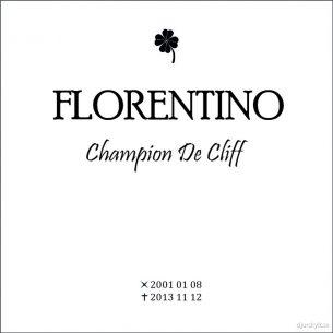 Gravsten hund Florentino