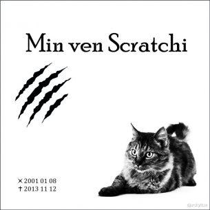 Gravsten bild katt Scratchi