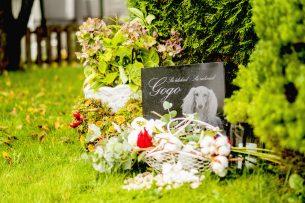 Gravsten hund Gogo gravplats