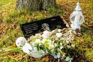 Gravsten hund Milou gravplats