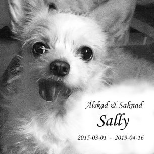 Gravsten hund Älskad och saknad Sally
