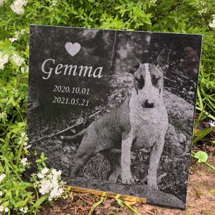 Gravsten hund Gemma